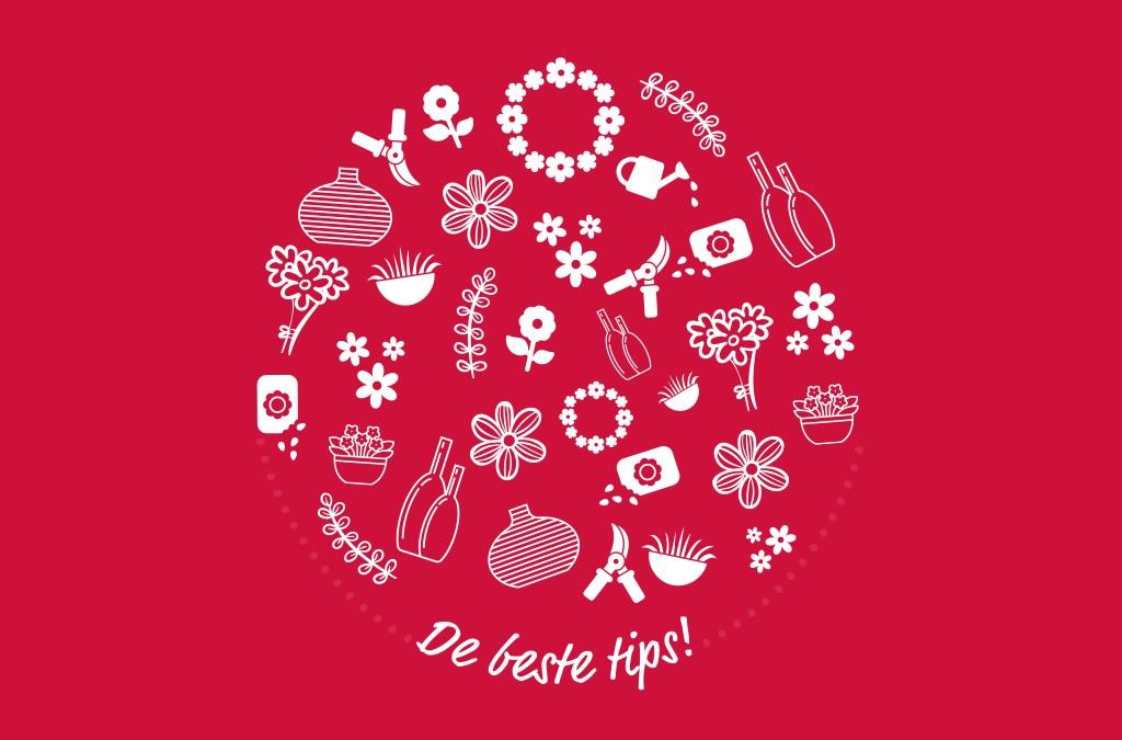 KRAANWATER IN DE VAAS | Floral Design Rosmalen